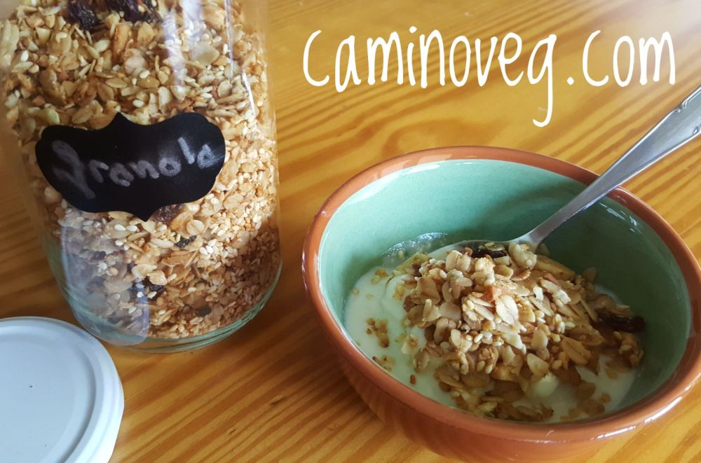 yougurt de soja con granola casera